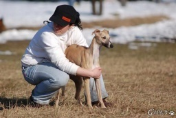 2010-02-27coursing_103web.jpg