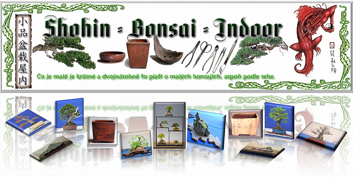 Shohin-Bonsai-Indoor jex.PNG